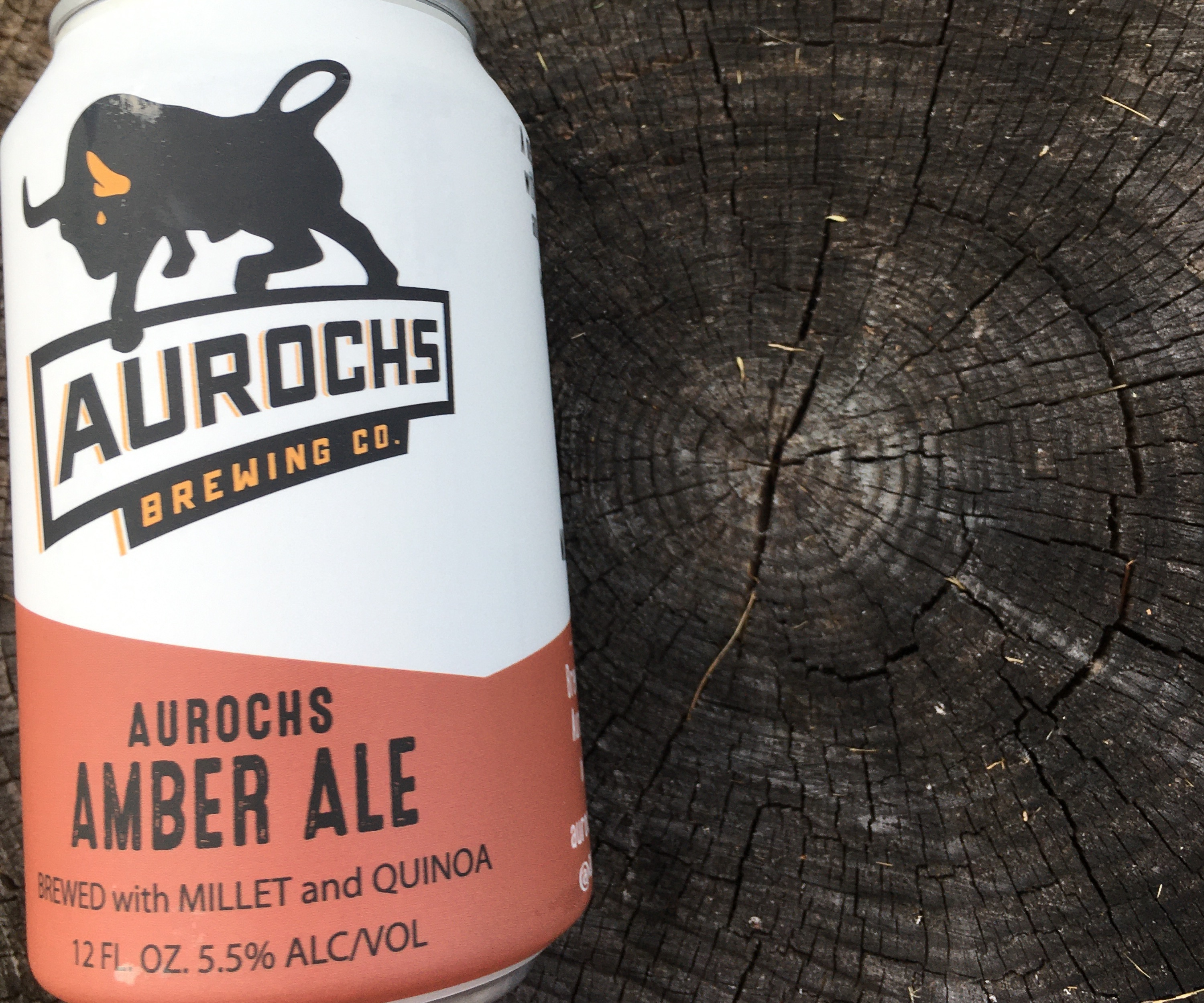 Picture of Aurochs Amber Ale