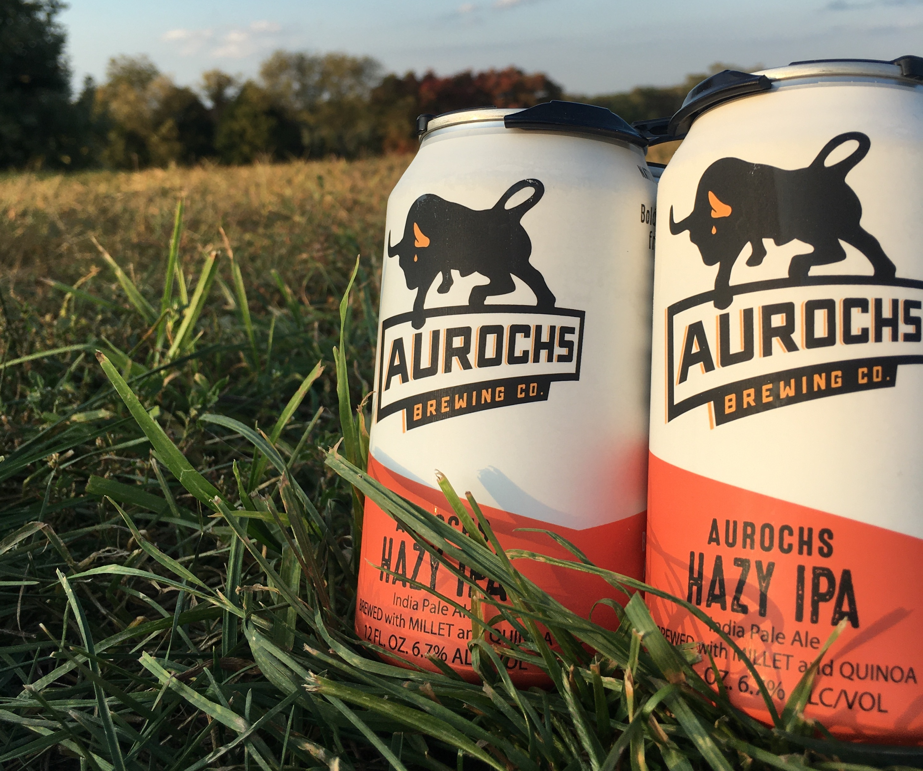 Picture of Aurochs Hazy IPA